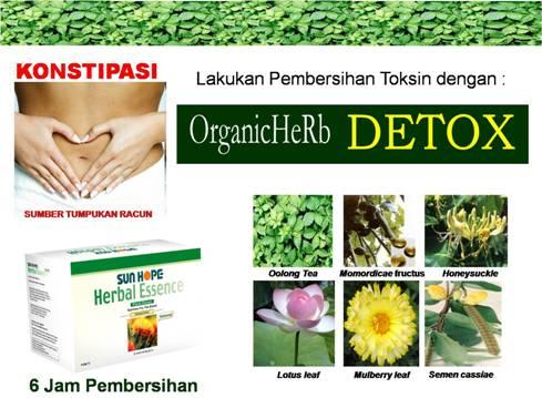 HERBAL ESSENCE Sun Hope - Teh Untuk Kesehatan saluran pencernaan ...